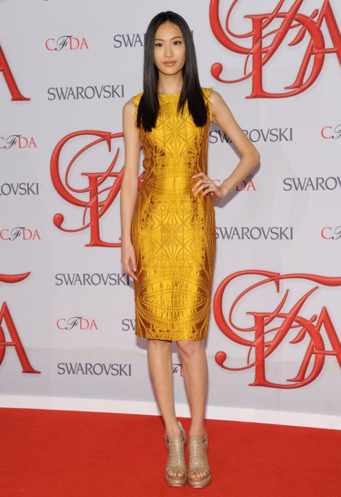 WTFSG-2012-CFDA-Awards-Shu-Pei