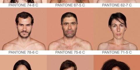 WTFSG-Pantone-humanae