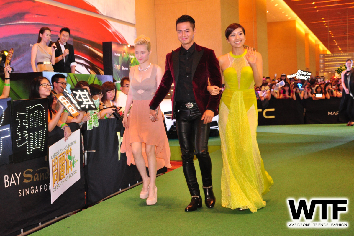 WTFSG-Starhub-TVB-Awards-2013-1