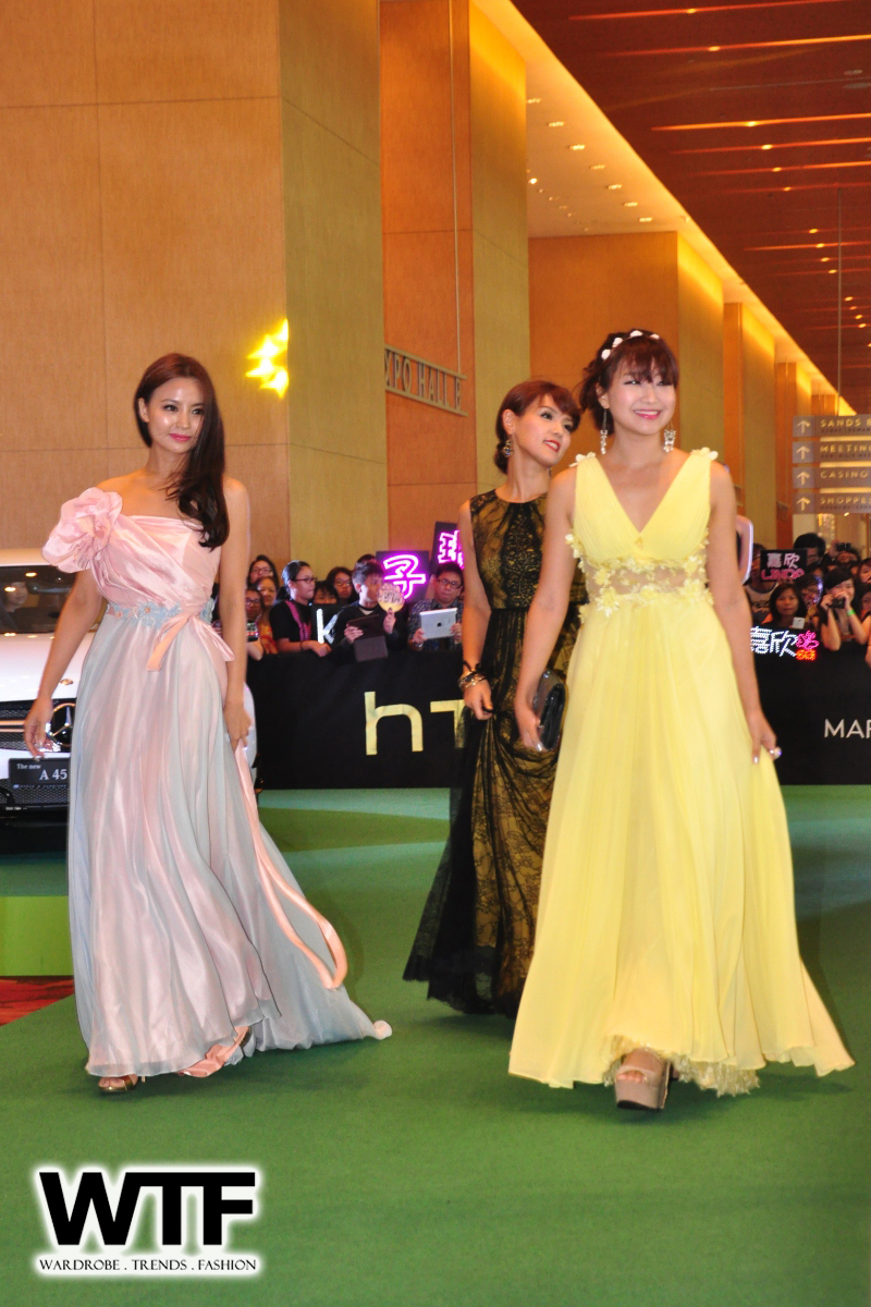 WTFSG-Starhub-TVB-Awards-2013-10