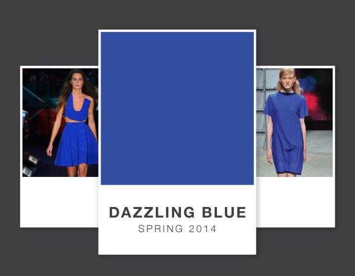 WTFSG-dazzling-blue-pantone-color-spring-2014-runways