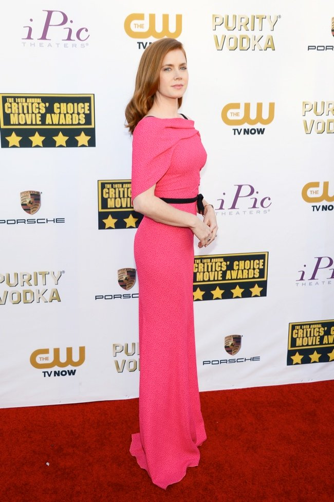WTFSG-2014-critics-choice-awards-Amy-Adams
