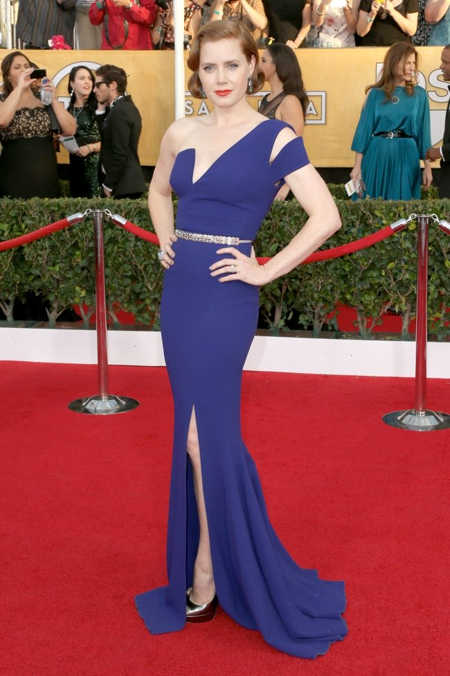 WTFSG-2014-screen-actors-guild-awards-amy-adams