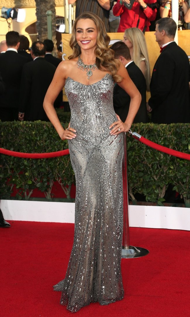 WTFSG-2014-screen-actors-guild-awards-sofia-vergara
