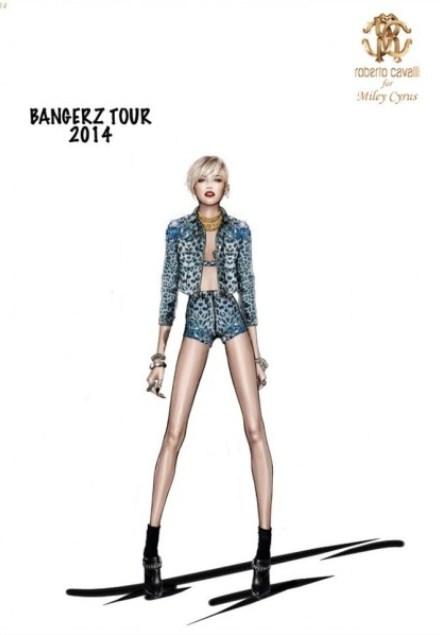 WTFSG-Roberto-Cavali-for-Miley-Cyrus-Bangerz-World-Tour-5