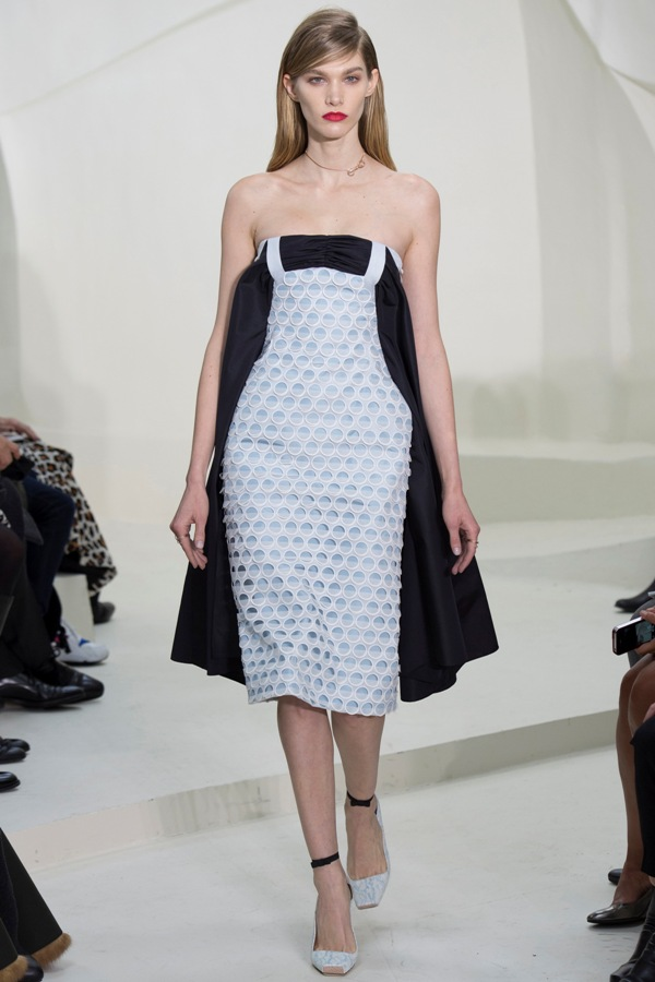 WTFSG-haute-couture-week-2014-christian-dior-spring-16
