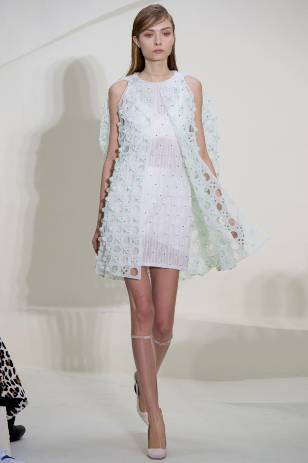 WTFSG-haute-couture-week-2014-christian-dior-spring-3