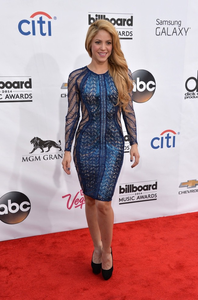 WTFSG-2014-billboard-awards-red-carpet-style-shakira
