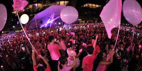WTFSG_pink-dot-2014