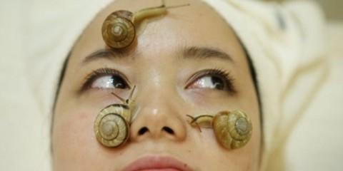 WTFSG_snail-facial-treatments-tokyo_1