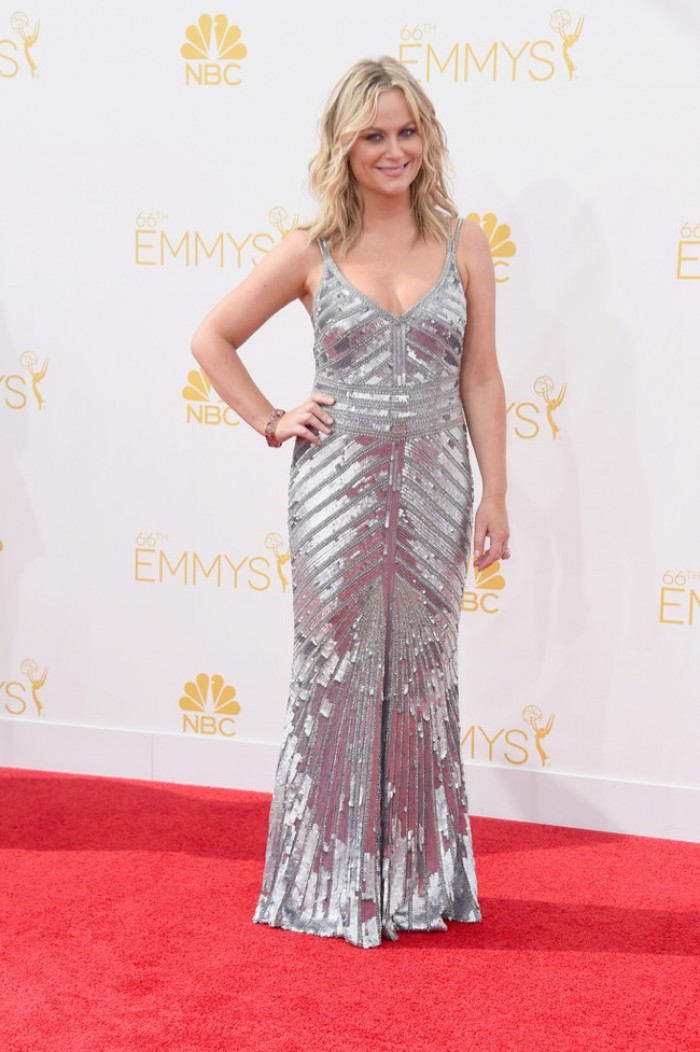 WTFSG-emmys-2014-red-carpet-amy-poehler-silver-theia