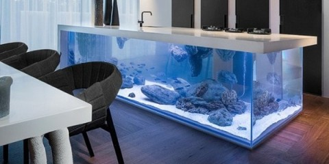 WTFSG_robert-kolenik-ocean-kitchen