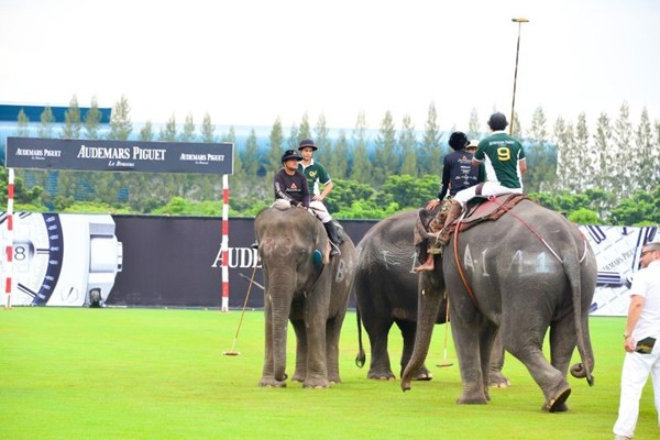 WTFSG_audemars-piguet-2014-kings-cup-elephant-polo-tournament_1