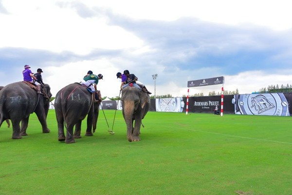 WTFSG_audemars-piguet-2014-kings-cup-elephant-polo-tournament_7