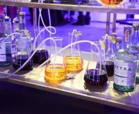 WTFSG_reyka-vodka-art-exhibition-gillman-barracks_6