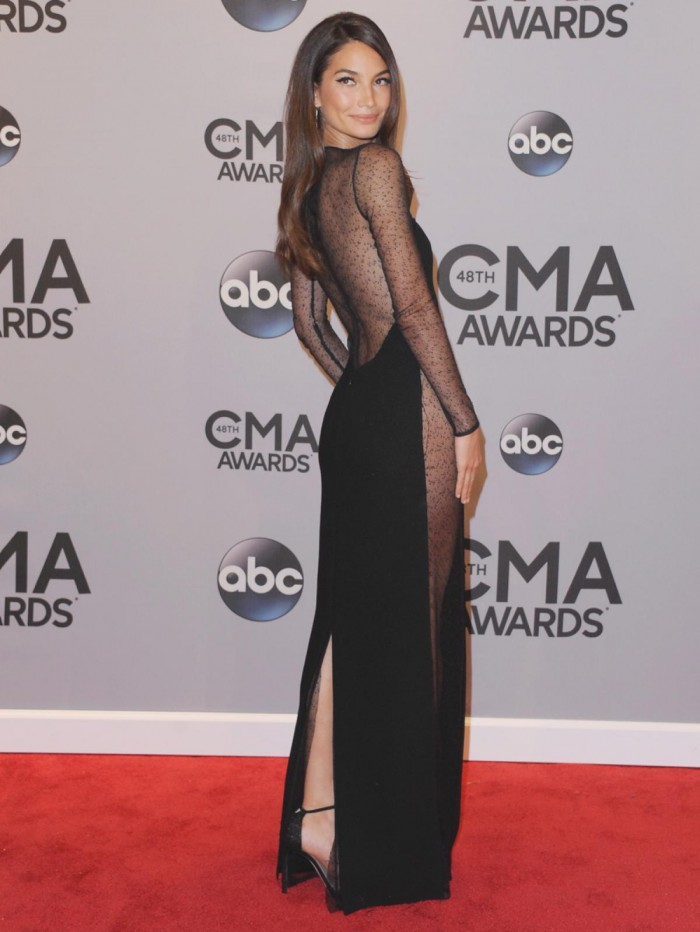 WTFSG-2014-cma-awards-lily-aldridge