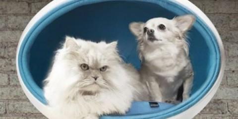 WTFSG_designer-padpod-pet-beds-from-bark-miao