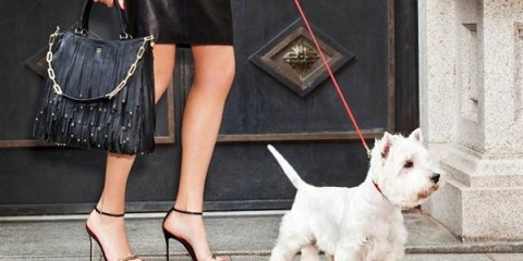 WTFSG_carolina-herrera-latest-ch-collection-inspired-by-dog