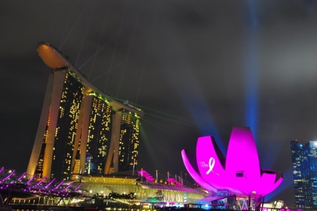 WTFSG_estee-lauder-companies-pinks-up-marina-bay-sands_4