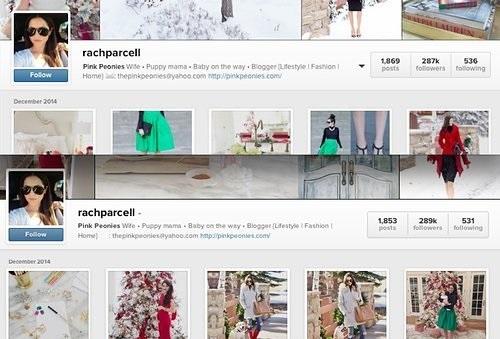 WTFSG_instagram-follower-drops_Pink-Peonies