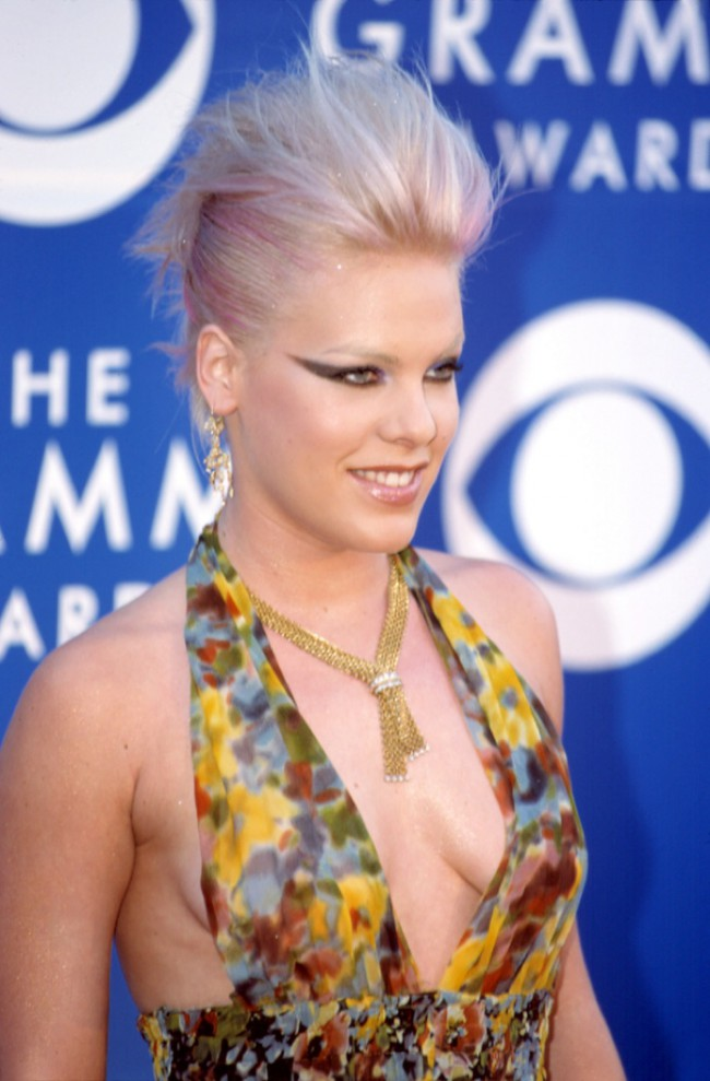 WTFSG_celebrities-stars-with-pink-hair_pink-singer