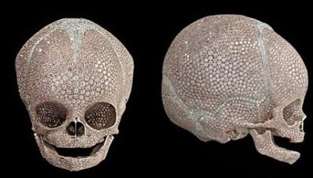 WTFSG_damien-hirst-infant-skull-hong-kong_1