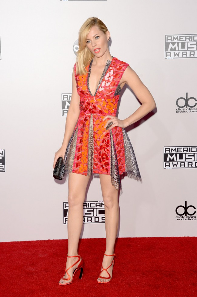 WTFSG_2014-american-music-awards-red-carpet_elizabeth-banks-peter-pilotto