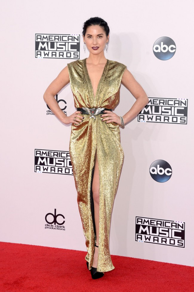 WTFSG_2014-american-music-awards-red-carpet_olivia-munn-Lanvin