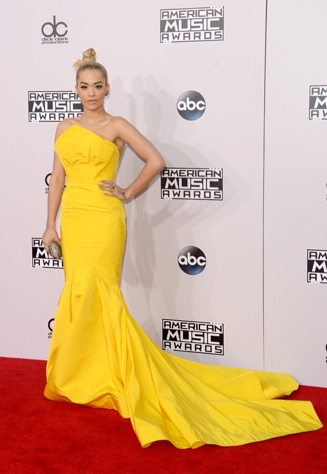 WTFSG_2014-american-music-awards-red-carpet_rita-ora-zac-posen