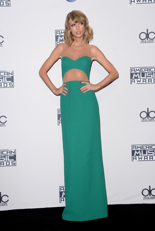 WTFSG_2014-american-music-awards-red-carpet_taylor-swift-michael-kors