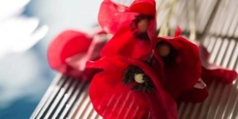 WTFSG_flower-wave-benefit-kenzo_1