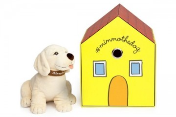WTFSG_mimmo-dog-dolce-gabbana