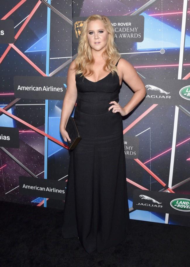 WTFSG_Amy-Schumer-Britannia-Awards-2015-Calvin-Klein-Black-Dress