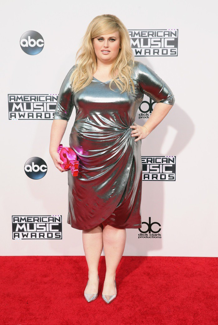 WTFSG_Rebel-Wilson-2015-American-Music-Awards-Silver-Dress