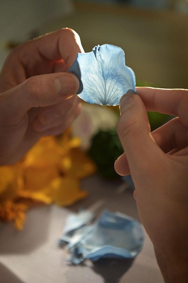 WTFSG_ballon-bleu-de-cartier-floral-marquetry-parrot_4