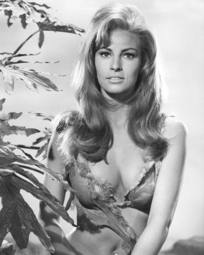WTFSG_1960s-hairstyles-celebrities_raquel-welch